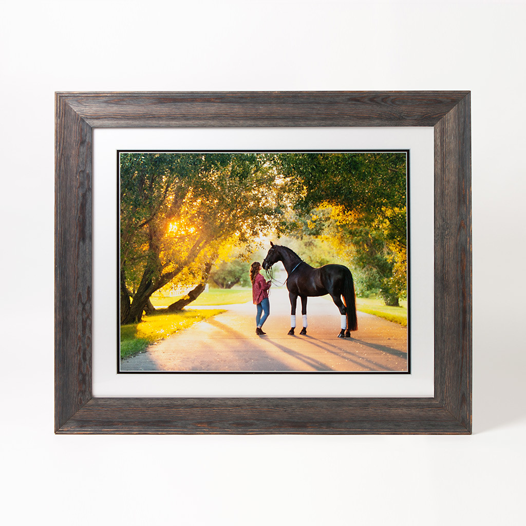 Bray Girl Horse Digital Matte Lancaster Black 569260